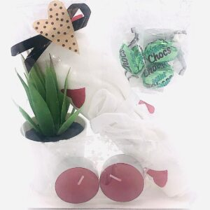 Presentpåse - Handduk, doftvärmeljus, växt i kruka, mintchoco