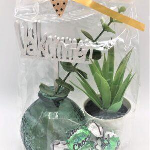 Presentpåse - Vas med kvist, växt i kruka, mintchoklad, Välkommen-skylt