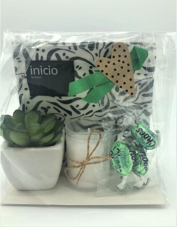 Presentpåse - Servetter, ljus, mintchoklad, växt i kruka