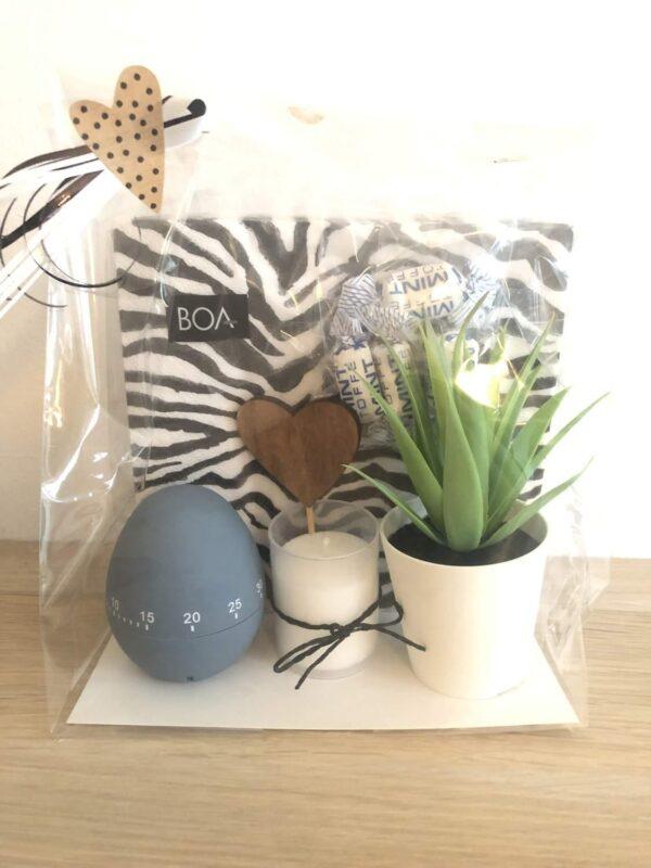 Presentpåse; Servetter, äggklocka, ljus, dekorationsväxt, trähjärta, mintkolor