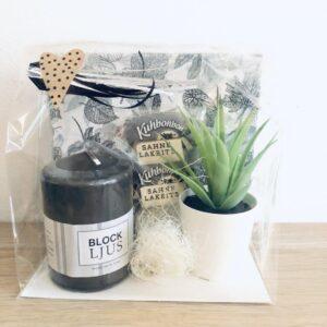 Presentpåse: Servetter, blockljus, växt, gräddlakrits